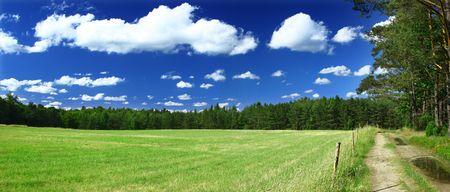 panoramisch uitzicht op grasveld, bos en een pad