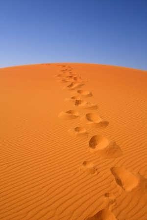 walking on Sahara, Erg Chebbi, Morocco , focus set in foreground Stock Photo - 4874245