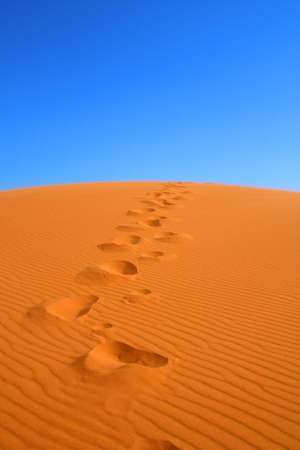 erg: walking on Sahara, Erg Chebbi, Morocco , focus set in foreground Stock Photo