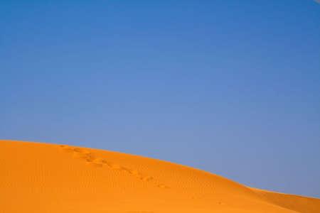 walking on Sahara, Erg Chebbi, Morocco  Stock Photo - 4942202