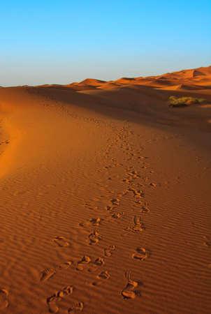 sunset over Sahara desert (Morocco), focus set in foreground Stock Photo - 5223848