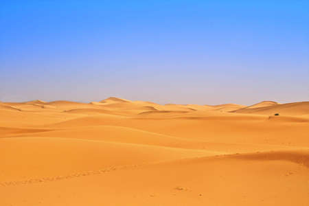 wide view of sand dunes, footsteps in foreground Stock Photo - 5815588