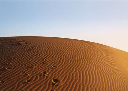 sunset over Sahara desert Stock Photo - 7172825