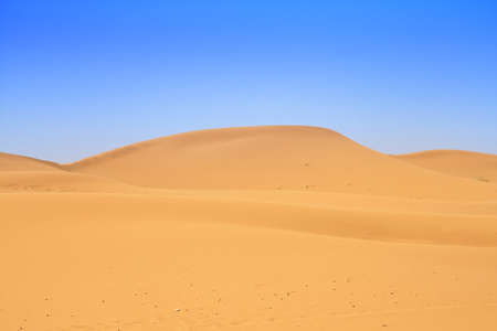 erg: sand dunes and beautiful cloudless sky, focus set in foreground