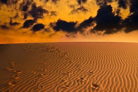 desierto del sahara: por la noche en el desierto del Sahara  Foto de archivo