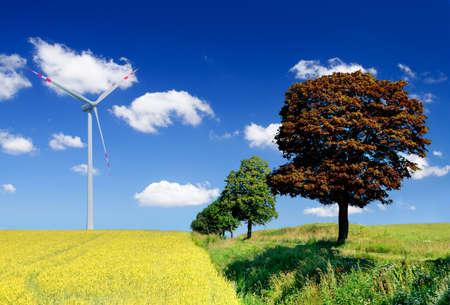 glückseliges Landschaft mit Feld und Wind turbine
