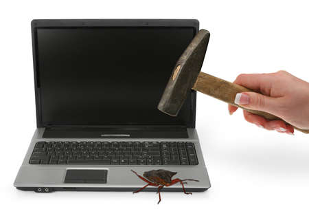 concept of computer bug on white Stock Photo - 8050013