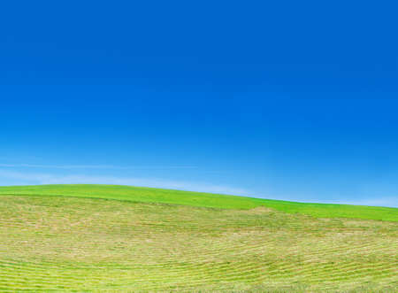 blissfull: freshly mowed lawn, beautiful cloudless sky in background Stock Photo