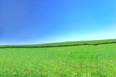 Sommer Land Ansicht mit wolkenlosem Himmel