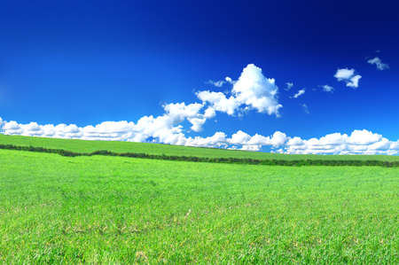 beautiful  summer country view with cumulus clouds Stock Photo - 17011796