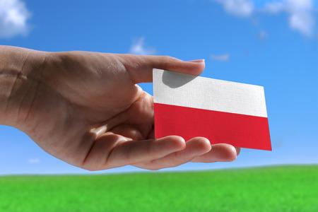 Kleine Poolse vlag tegen mooie landschap