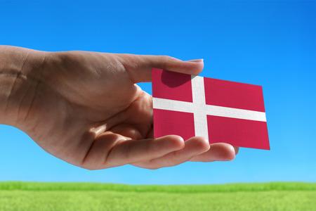 Kleine vlag van Denemarken tegen mooie landschap met gras