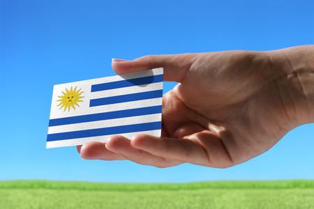 Kleine vlag van Uruguay tegen mooie landschap met gras Stockfoto