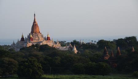 lord buddha: Land of Lord Buddha