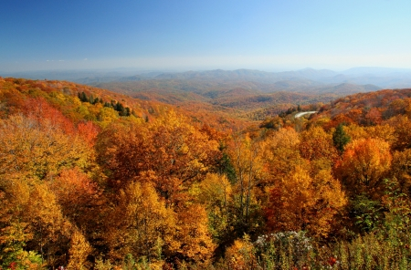 Patchwork of autumn colors viewed from a mountain overlook photo