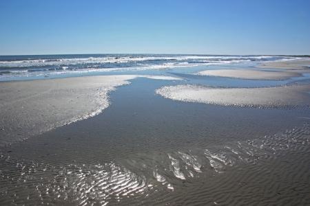 潮溜まりで晴れてオーシャン ビーチ
