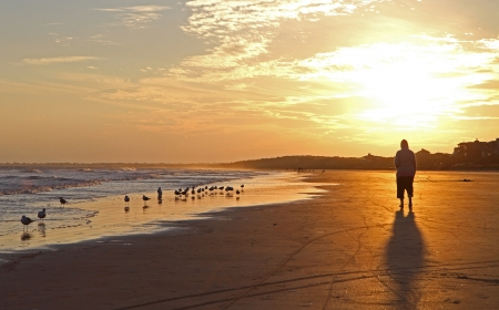 Ocean sunset with sea gulls and a walker photo