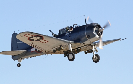 dauntless: Monroe, North Carolina - November 10, 2013 - World War II Douglas Dauntless Dive-Bomber Performing during Warbirds Over Monroe Air Show in Monroe, NC