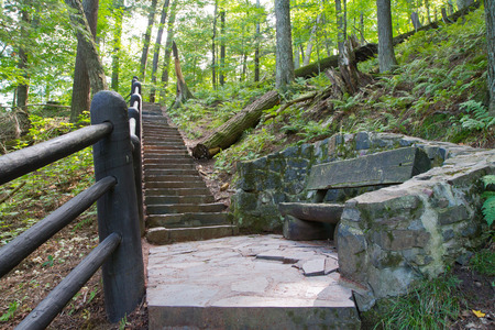 Rustic stone stairway in dense forest with log-hewn bench.