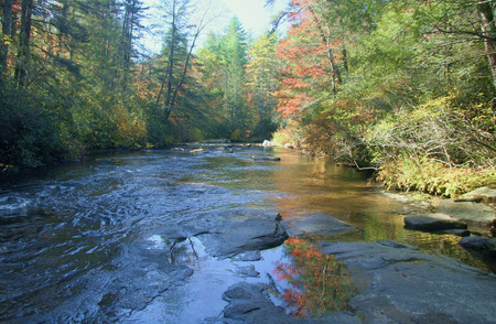 Little River in the DuPont State Forest in the North Carolina mountains.