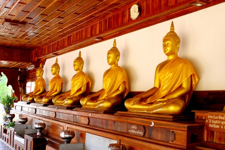 lord buddha: Five Lord Buddha