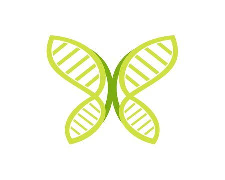 DNA butterfly vector