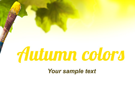 autumn leaves with brush with yellow pain on it in front, autumn conception photo