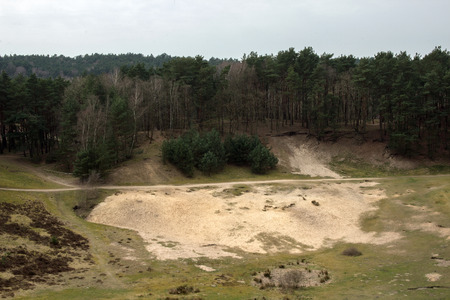sandpit: Sandpit with forest in the background in the Fischbeker heathland