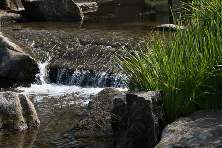 Small watercourse with stones and grass