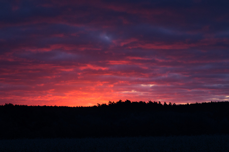 Colorful sunrise at the Wulmstorfer heathland