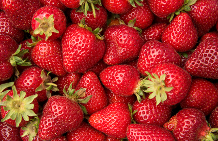 Freshly picked strawberries for healthy living Stock Photo