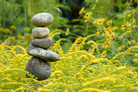 daises: Serene setting of rocks, yellow flowers, and green foliage Stock Photo
