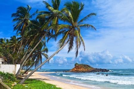 lanka: Mirissa beach, Sri Lanka Stock Photo