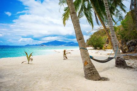 hamaca: Hamaca colgando de árboles plam en la idílica playa de Malcapuya, Palawan, Filipinas.