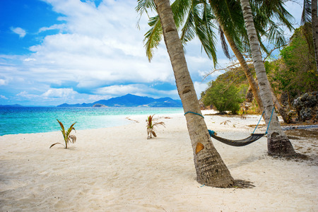 palawan: Hammock hanging from plam trees at the idyllic Malcapuya beach, Palawan, Philippines.