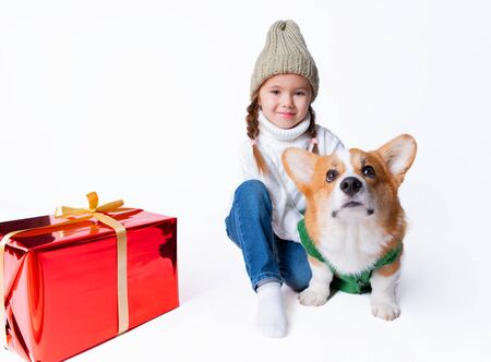 Portrait of young little girl with her pet puppy of corgi. Hugging near present. Concept christmas, new year and birthday. Isolated on white Foto de archivo - 130774524
