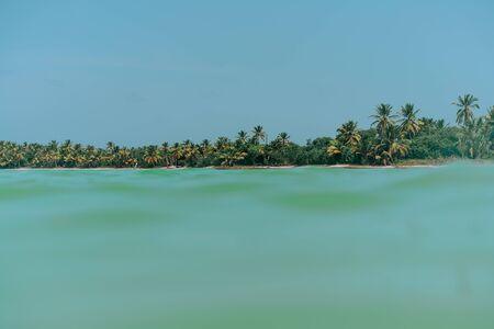 Tropical wild beach with palm trees. Ocean view. Paradise Foto de archivo - 132265263