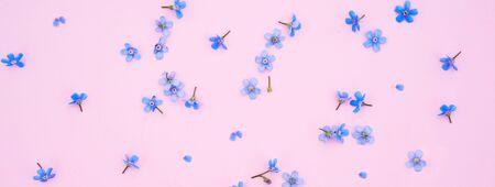 Summer garden flowers frame on the pink background. Pattern
