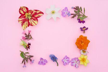 Summer garden flowers frame on the pink background. Copyspace