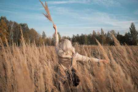Freedom. Young woman standing on the field, sunset. Autumn clothes 스톡 콘텐츠