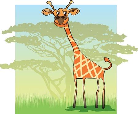 camelopard: Funny Giraffe in the African savanna. Vector illustration Illustration