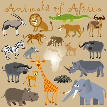 Funny wild animals of Africa. Vector illustration