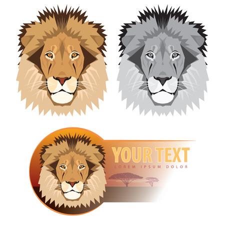 Tête de lion. Vector illustration Banque d'images - 55218613