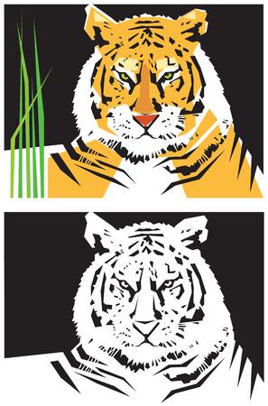 호랑이의 양식에 일치시키는 이미지. 벡터 일러스트 레이 션