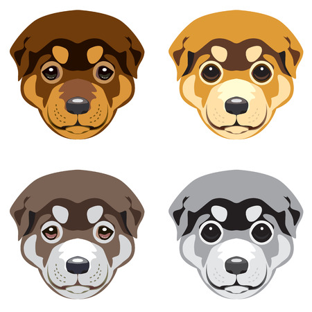 Puppy muzzle. Set of vector illustrations