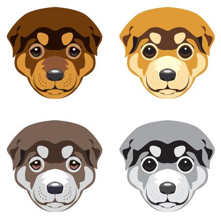 muzzle: Puppy muzzle. Set of vector illustrations