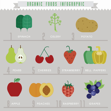 Organic food Info-graphics Vector