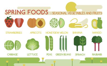 Spring foods seasonal vegetables and fruits Illustration