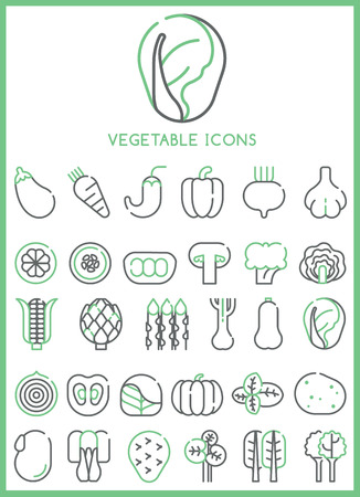 artichoke: Vegetable Icons set vector Illustration