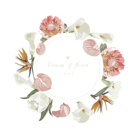 Orchids floral bouquet . Flourish greeting card and circle label . 矢量图像